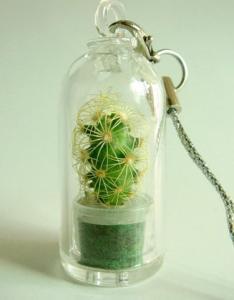 Фото Брелок с живым растением Брелок с живым растением
