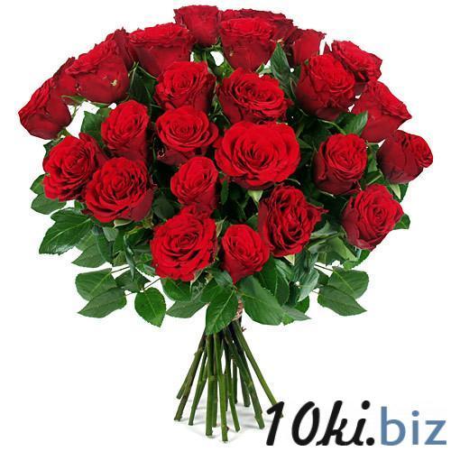 Живые цветы санкт петербург доставка цветов из израиля в канаду