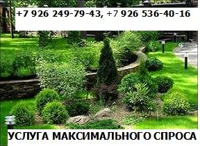 Фото  1. ПАКЕТ  УСЛУГ МАКСИМАЛЬНОГО СПРОСА +7 926 249-79-43 +7 926 536-40-16