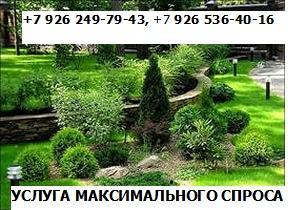Фото  1. БРЕНД - УСЛУГА МАКСИМАЛЬНОГО СПРОСА +7 926 249-79-43 +7 926 536-40-16