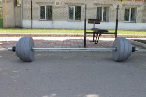 Фото Блины, диски для штанги и гантелей Блины, диски для штанги и гантелей 10 кг от производителя (пара)