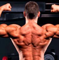 Фото  Протеин для роста мышц КСБ 55 Myscle Max