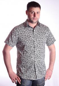 Фото Рубашки и безрукавки, рубашки короткий рукав Модель: 2012-111