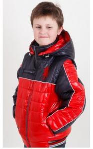 Фото Верхняя одежда (весна-осень) 08021 Куртка-жилет ДЕМИД демисезонная (синий+красный)