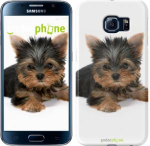 Фото Чехлы для Samsung Galaxy S6 G920 Чехол на Samsung Galaxy S6 G920 Щенок йоркширского терьера
