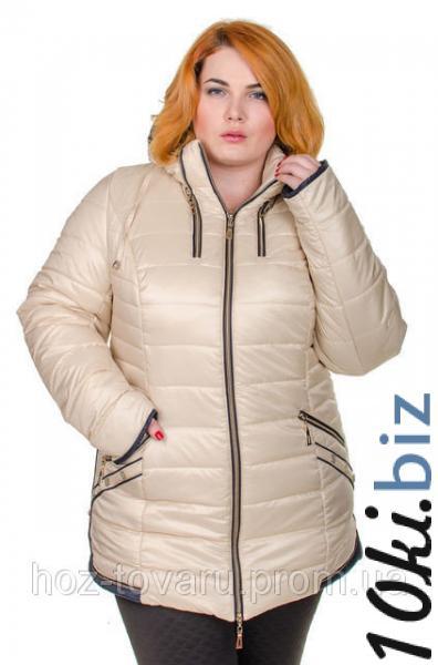 Куртка Зимняя Большой Размер Минск Купить