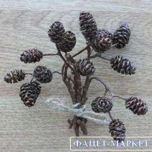 Фото Дары природы, Шишки для декора Шишка ольховая коричневая