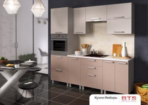 Кухня Имбирь модульная (БТС мебель)