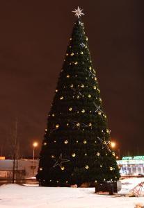 Фото Уличные каркасные елки от 3 до 21м Уличная искусственная ель Эверест от 8м до 21м