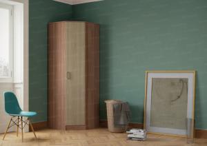 Фото  Шкаф угловой с одной дверью. Ясень мимо тёмный/светлый