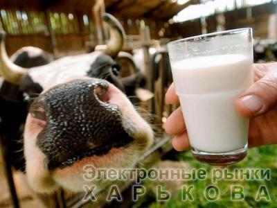 """ЗЦМ """"Теленок.JUNIOR +"""" (с 25-30 дня 50% молочной основы)"""
