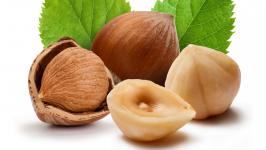 логотип Лесной орех, фундук купить по низкой цене в Харькове