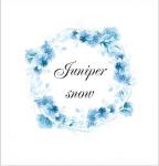 логотип Juniper-snow