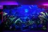 Флуоресцентная краска и пигменты, светятся под воздействием УФ источника