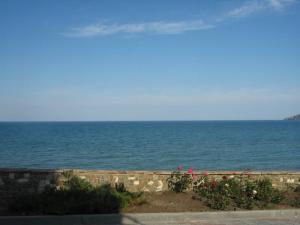 Фото Орджоникидзе, Эллинги Орджоникидзе, эллинги, 1 минута до моря