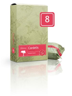 08 Cardelis