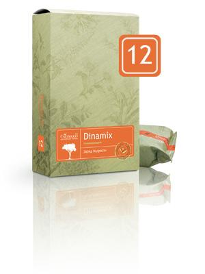 12 Dinamix
