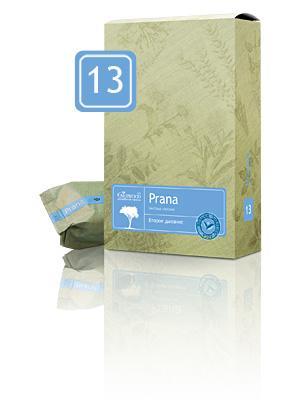 13 Prana