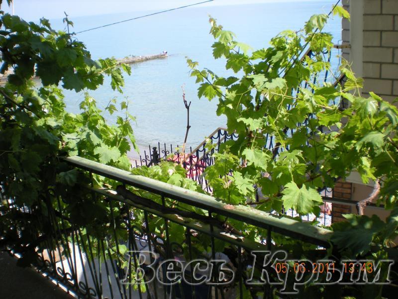 11 КОКОС  эллинг в аренду отдых в крыму на берегу моря с детьми в г. Ялта 1 эт. ( семейный номер ) Жилье для отдыха в Крыму