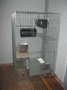 Фото Клетки для шиншилл Клетка для полигамного содержания №1