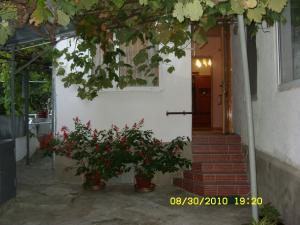 Фото Квартиры, Двухкомнатные квартиры Двухкомнатная квартира с небольшим двориком. №9
