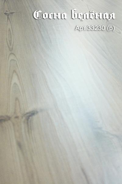 Сосна беленая 33230 (Р)