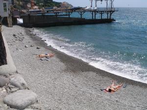 Фото Эллинги Эллинг на пляже  (от 2х до 4х человек). № 96