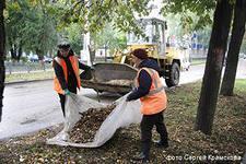 Фото  Уборка, погрузка, вывоз и утилизация мусора под
