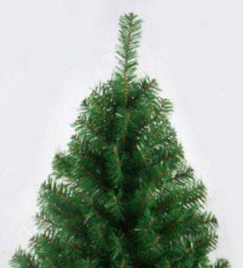 Фото Зеленые ёлки Ёлка зелёная 180 см