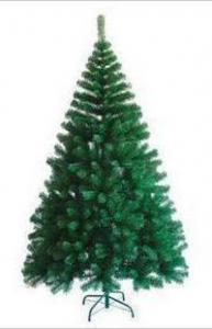 Фото Зеленые ёлки Ёлка зелёная 240 см