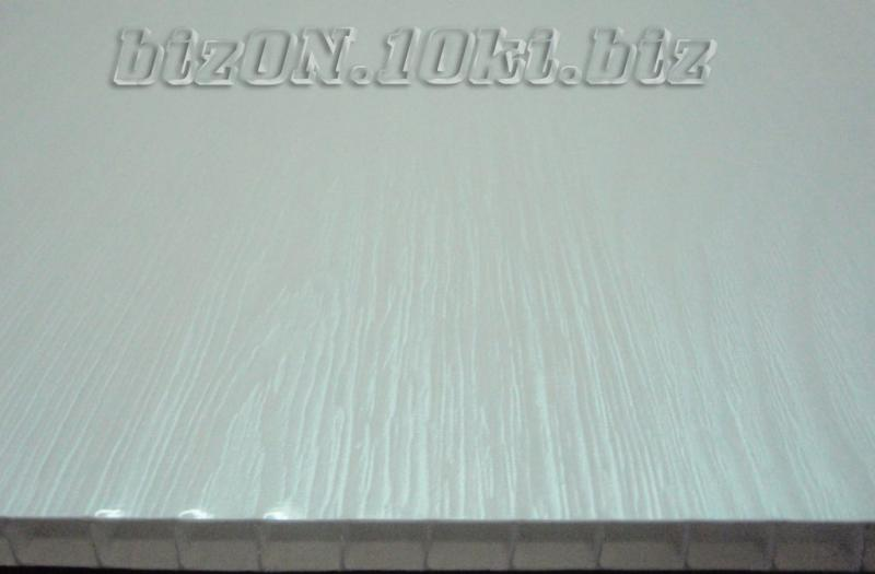 Фото Панели ПВХ 250 мм (Термоперевод) «ЯСЕНЬ БЕЛЫЙ»   Пластиковые панели ПВХ   (Термоперевод)   «RIKO»
