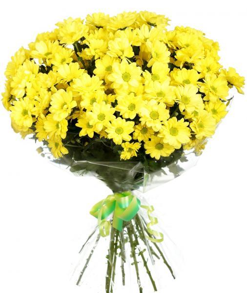 """Букет """"25 желтых хризантем"""" (Бакарди)"""