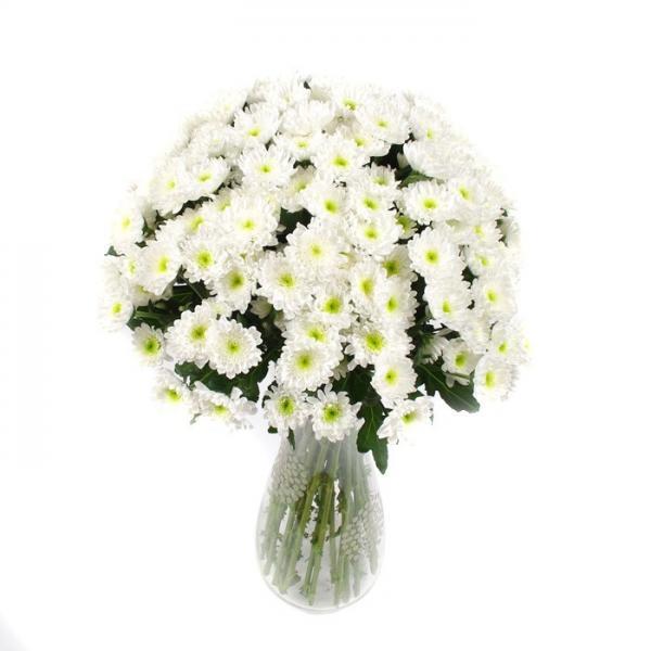 """Букет """"25 белых хризантем"""" (Зембла)"""