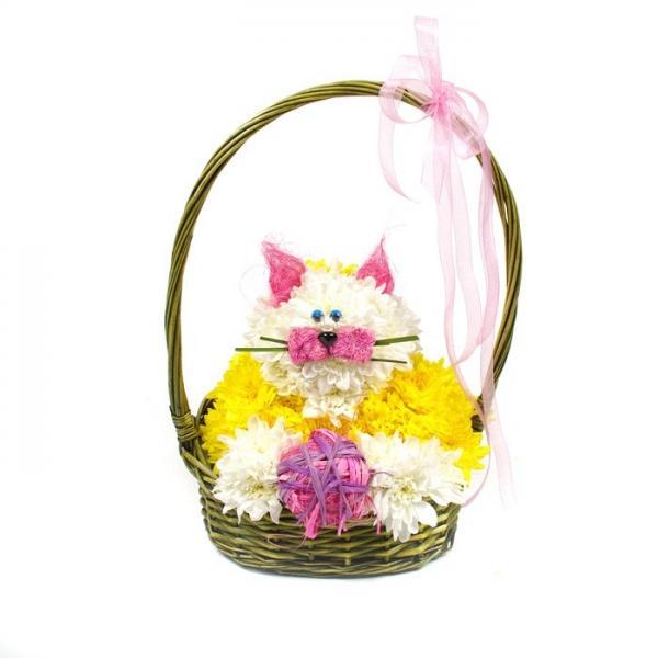 Котик в корзине