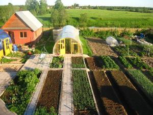 Фото ТОВАРЫ ДЛЯ ДАЧИ Удобрение органическое для укрепления корневой системы