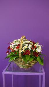 Фото Корзины из цветов и цветочные композиции Композиция № 1