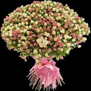Фото Букеты, 101 роза Букет из 101 розы №7