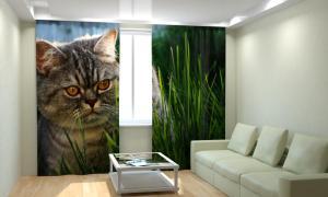 Фото 3D фотошторы, Для комнаты, Животные Кот в траве