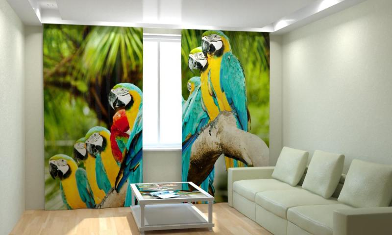 Пестрые попугаи