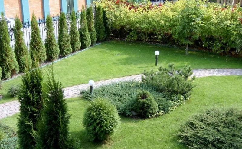Озеленение и уход за территориями