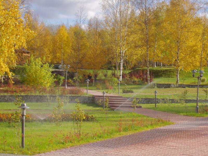 Озеленение территорий и уход за зелёными насаждениями