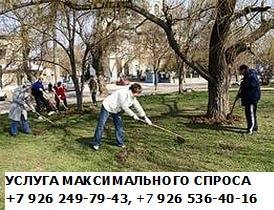 ПАКЕТ - УСЛУГ МАКСИМАЛЬНОГО СПРОСА +7 926 249-79-43 +7 926 536-40-16