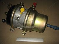 Камера тормозная с пружинный энергоаккумулятором (100.3519100) (в сб. тип 20/20) (пр-во г.Рославль)