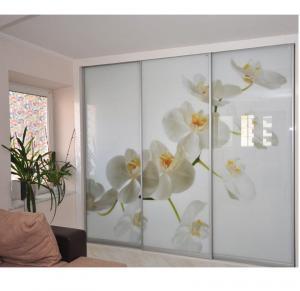 Фото Наполнение двери (фотопечать, химтравление, покраска) Фотопечать на стекле