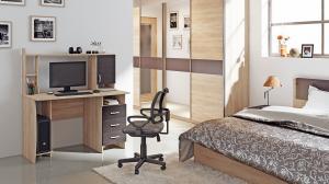 Фото Компьютерные столы Компьютерный стол «Студент-Класс М»(ТриЯ)