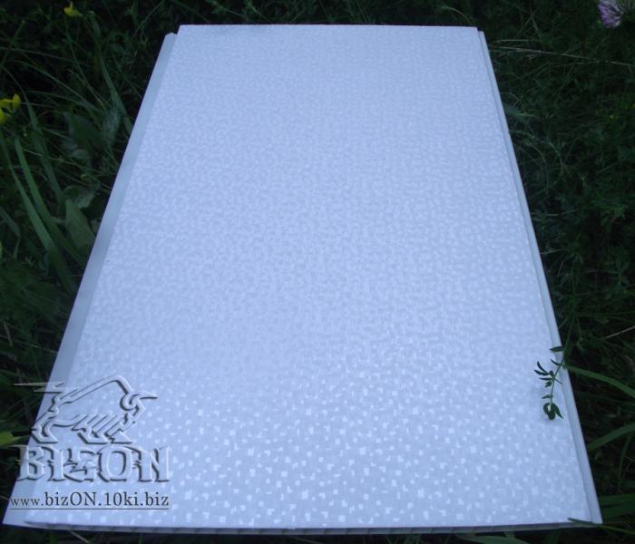Фото Панели ПВХ «Пиксель»   Ламинированные  пластиковые панели ПВХ   «RIKO»