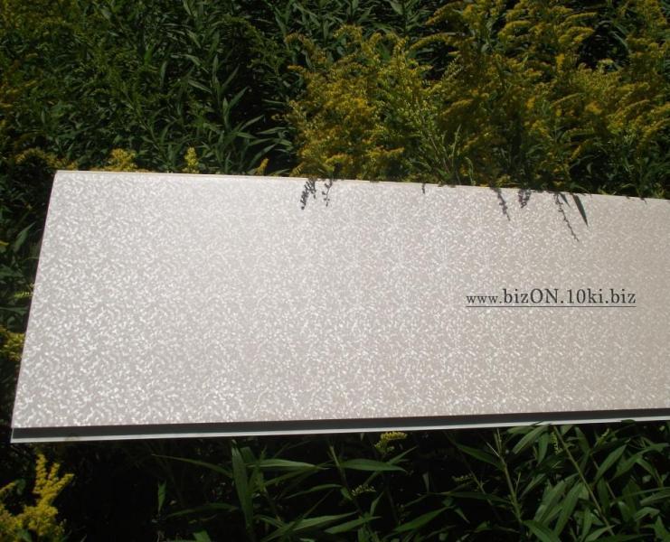 Фото Панели ПВХ «Кристалл»   Ламинированные  пластиковые панели ПВХ   «RIKO»