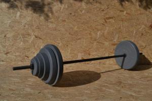 Фото Штанги Штанга домашняя 67,5 кг