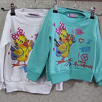 Фото Одежда, Ватники, регланы, водолазки Регланы
