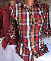 Фото Свитера/рубашки , Одежда Свитера